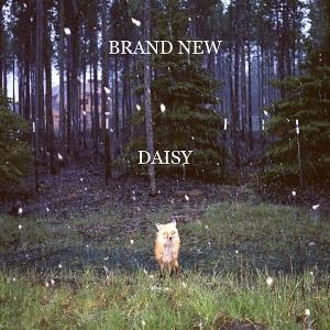 Brand-New-Daisy-Artwork